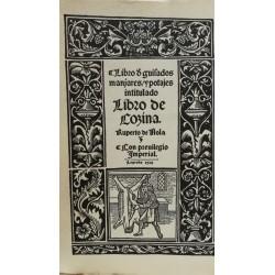 LIBRO DE GUISADOS, MANJARES Y POTAJES Intitulado Libro de Cozina