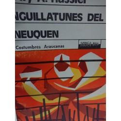 NGUILLATUNES DEL NEUQUEN Costumbres Araucanas