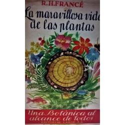 LA MARAVILLOSA VIDA DE LAS PLANTAS
