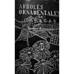 ÁRBOLES ORNAMENTALES DE CARACAS