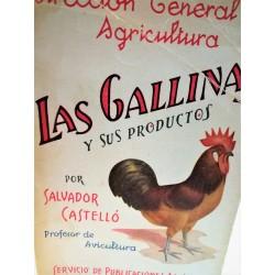 LAS GALLINAS Y SUS PRODUCTOS