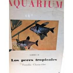 AQUARIUM Los Peces Tropicales Familia Characidae