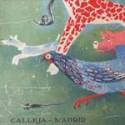CUENTOS DE CALLEJA